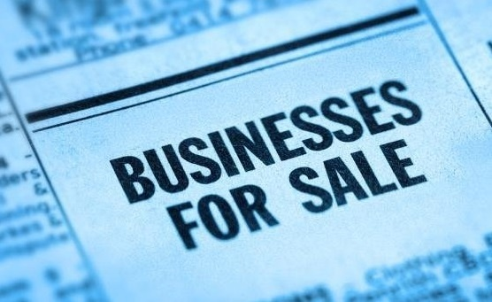 Buying and Selling Businesses and Professional Practices