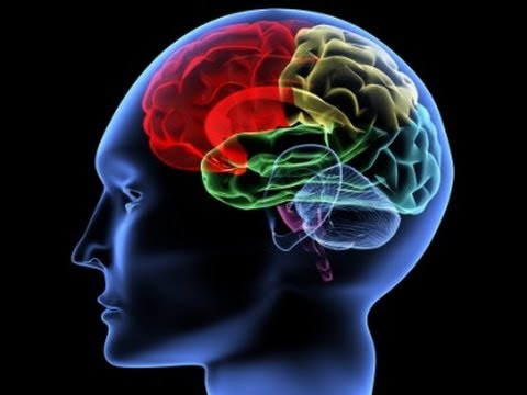Improve Your Memory – Improve Your Life